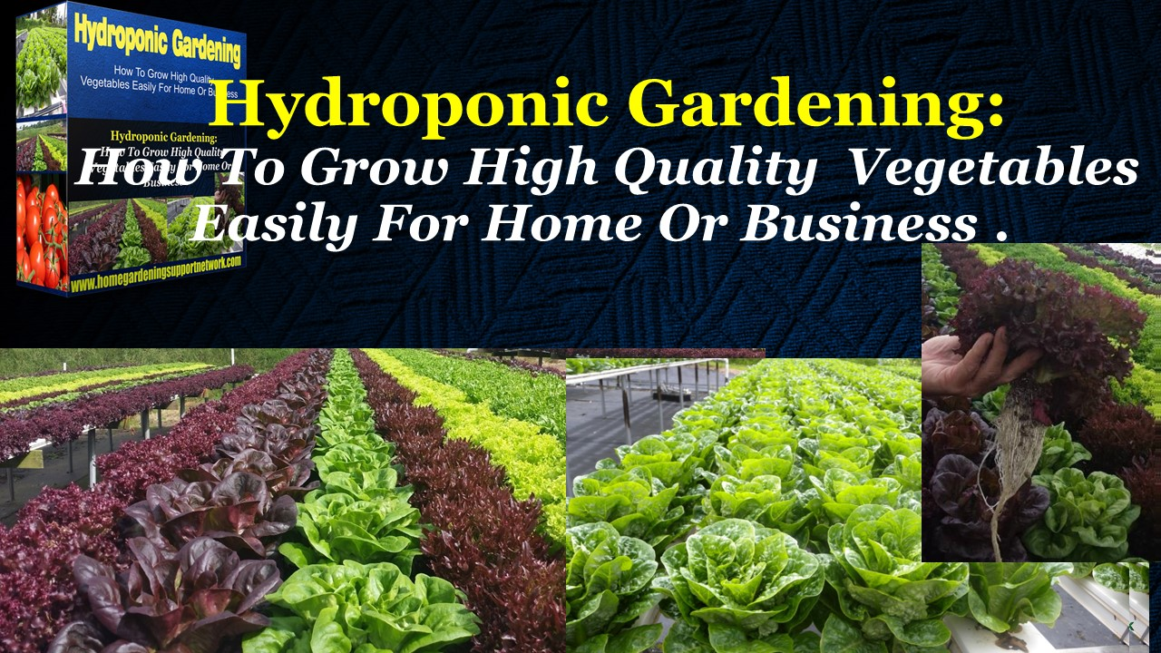 Would You Like To Know How To Select The Right Hydroponic System For Your  Home Or Business?